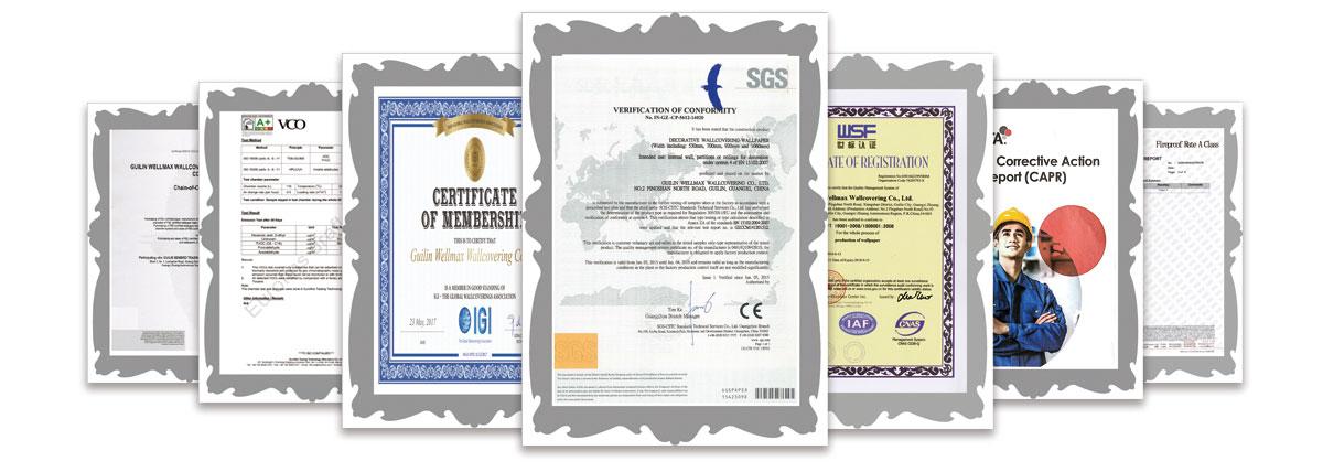 wellmax certificate